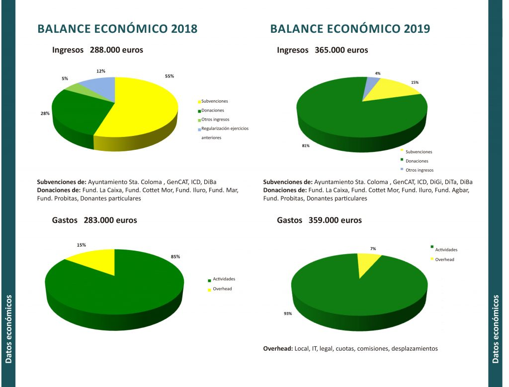 Imagen con los gráficos del balance económico de la memoria 2019